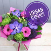 Urban Elements Range