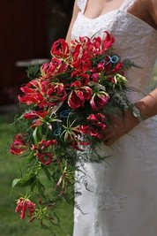 Trailing Bridal Bouquets Gallery