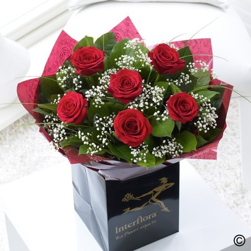 6 Dramatic Red Roses With Gyp